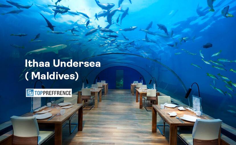 Ithaa Undersea ( Maldives)